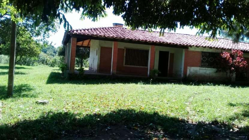 Campo yaguaron km 54 - 3