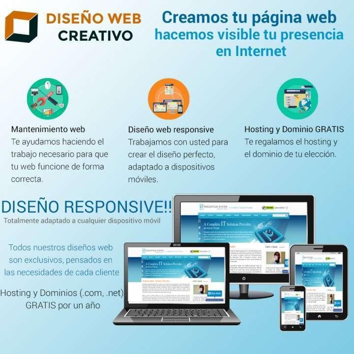 Diseño web profesional - desarrollo de páginas web - 0