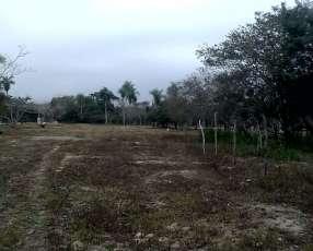 Lotes en Areguá