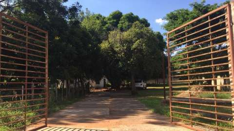 Terreno en Luque sobre Britez Borges zona Laguna Grande