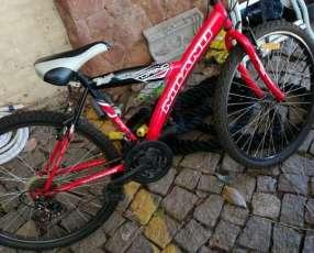 Bicicleta Milano Torino