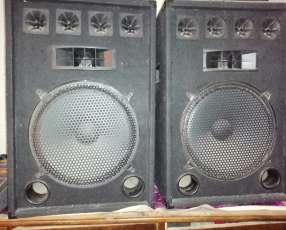 Bables de 12 pulgadas con amplificador de 500W