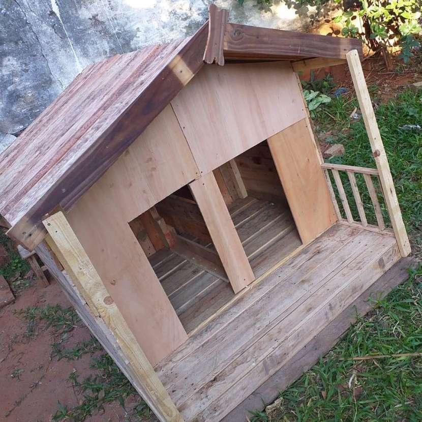 Casa para perros - 1