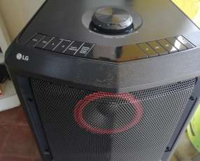 Equipo de sonido portátil LG