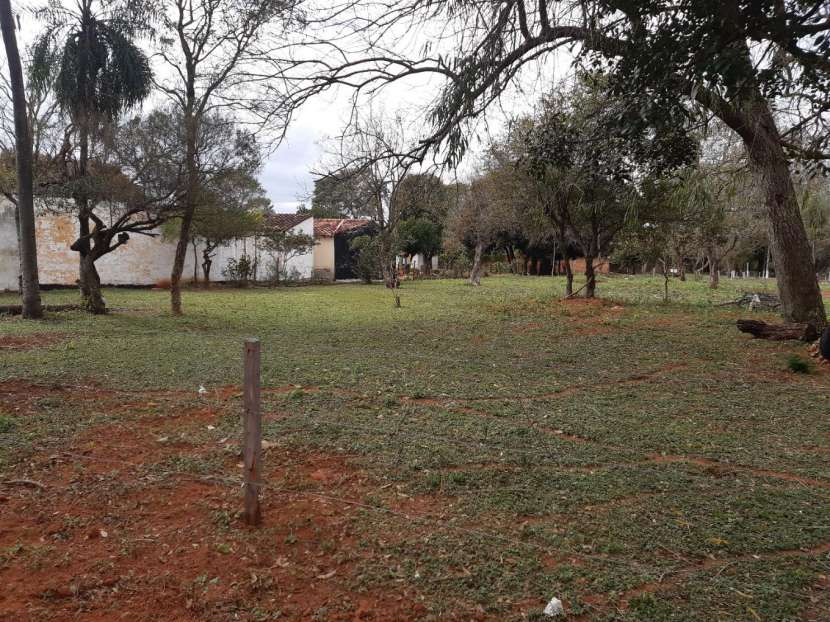 Terrenos en San Lorenzo - 1
