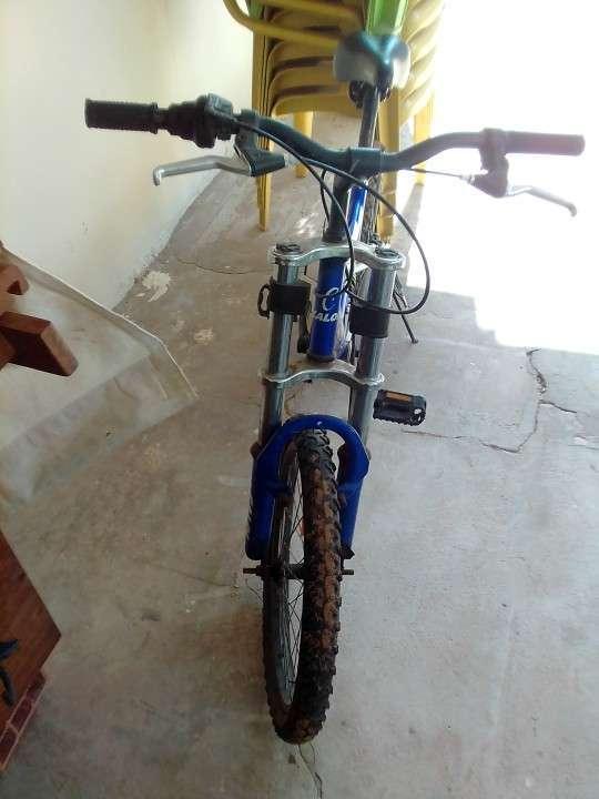 Bicicletas Caloi - 2