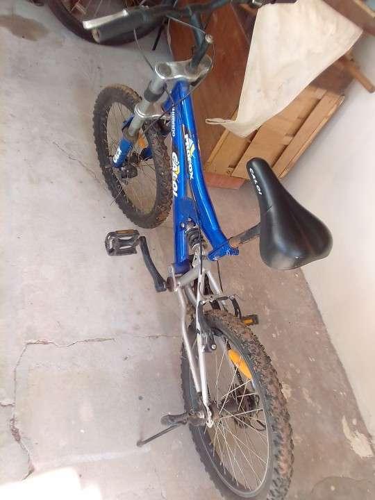 Bicicletas Caloi - 1