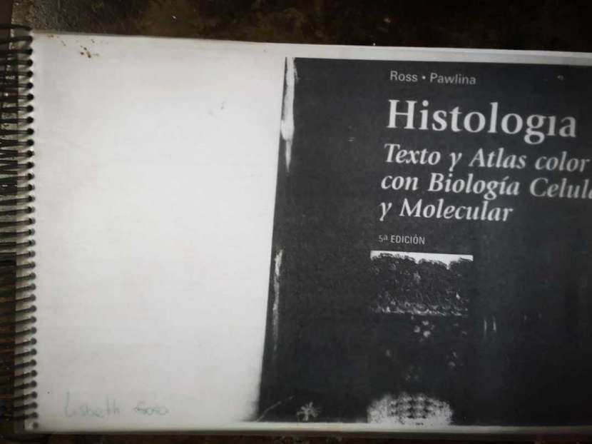 Histología-Ross Paulina - 0
