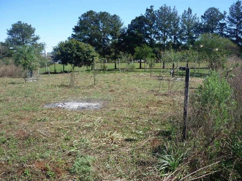 Terreno en Encarnación E2207 - 2