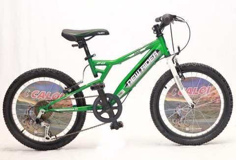 Bicicleta Caloi New Rider 20