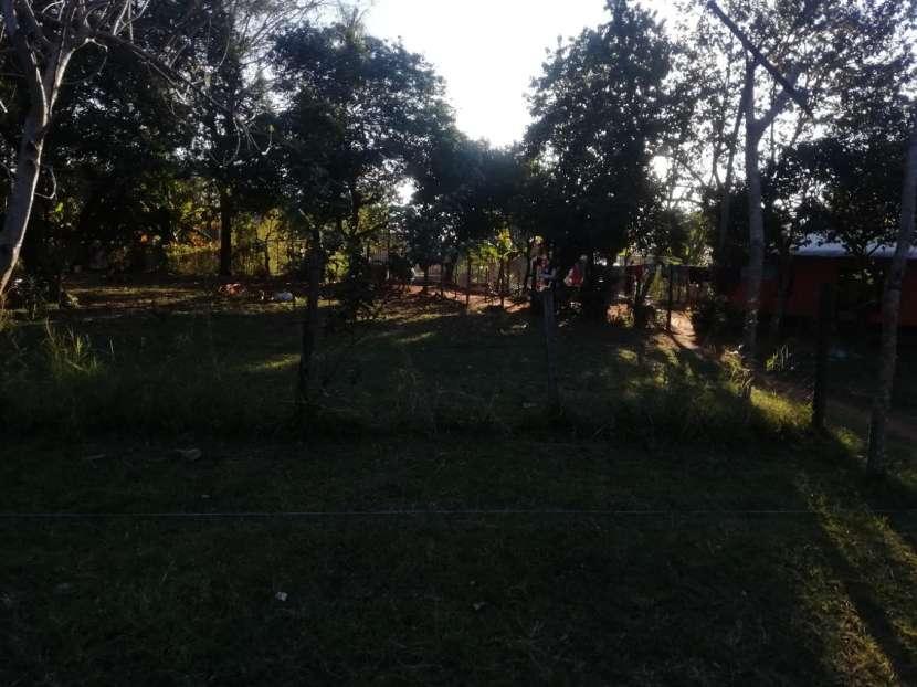Terreno de 12x30 camino al hospital nacional de Itauguá - 2