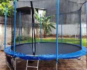 Cama elástica 3,66 mts con red de protección
