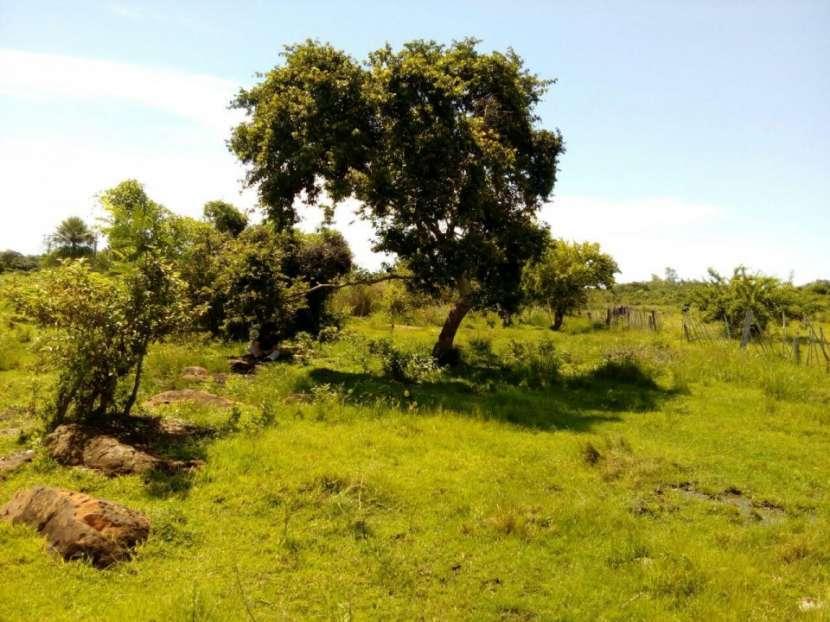 Terrenos en Arroyos y Esteros - 3