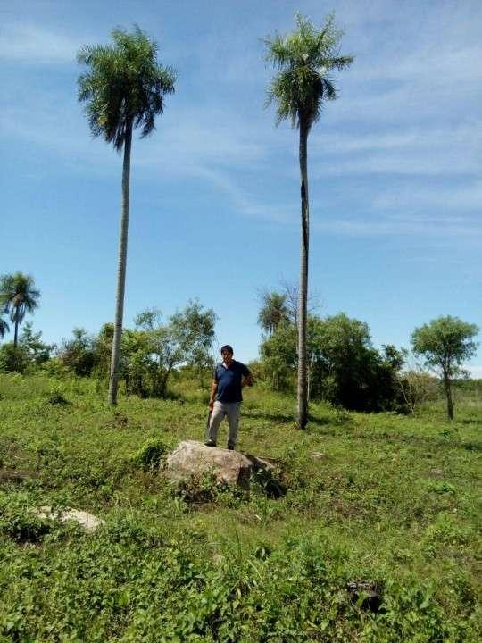 Terrenos en Arroyos y Esteros - 6