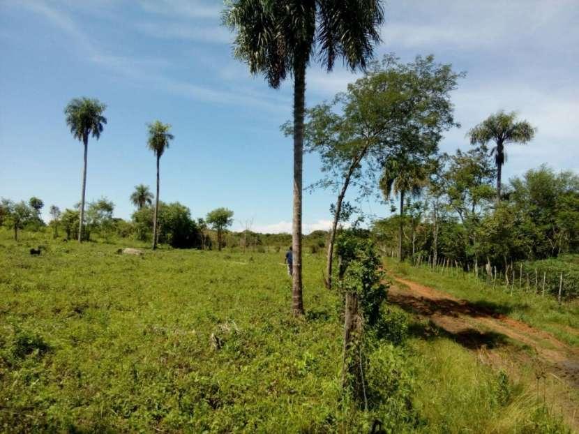 Terrenos en Arroyos y Esteros - 5