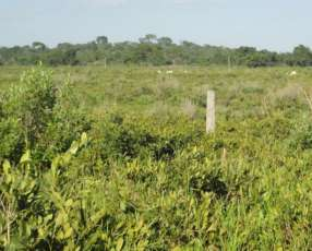 Estancia en Salazar 2.000 hectáreas