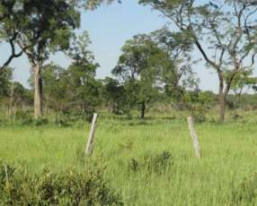 Estancia 1.250 hectáreas en Acebal Chaco