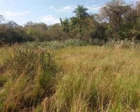 Campo 288 hectáreas en Arroyos y Esteros Cordillera