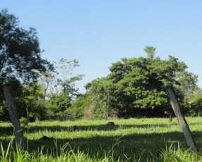 Estancia 549 hectáreas en Itacurubí del Rosario San Pedro
