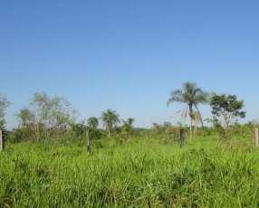 11 hectáreas en 25 de diciembre