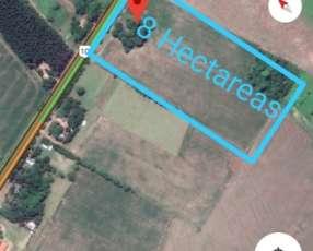 Propiedad de 8 hectáreas