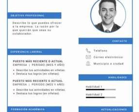 Elaboración de CV y asesoría