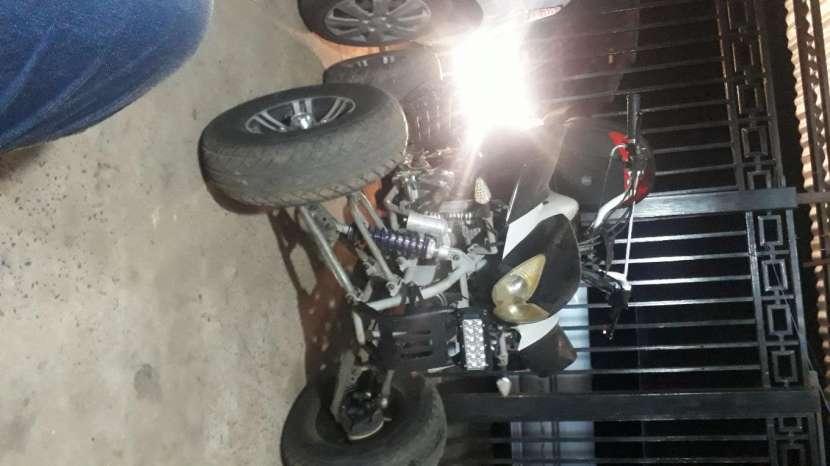 Cuasi pitbull 200cc - 1