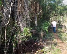 2.740 hectáreas en Ñeembucú