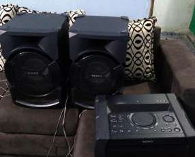 Equipo de sonido Sony Shake X1D