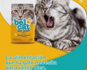 Balanceado para gatos de 10 y 20 kg