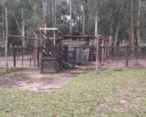 Estancia en General Díaz 8.000 hectáreas