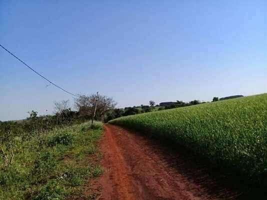 Terreno en Itapúa - 1