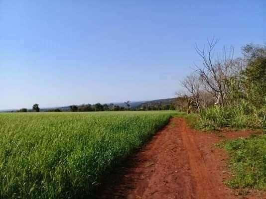 Terreno en Itapúa - 2