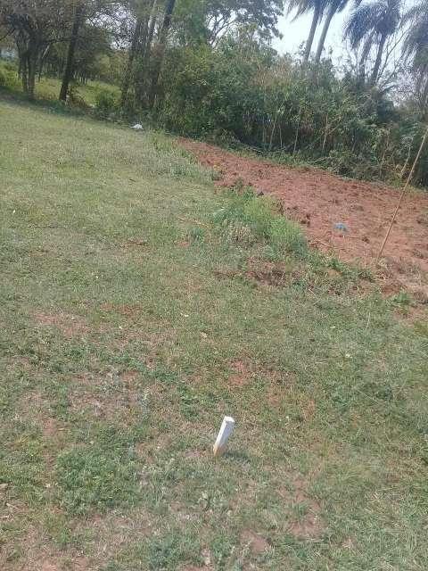 Terrenos en Guarambaré - 4