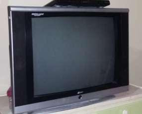 TV de 29 pulgadas + DVD