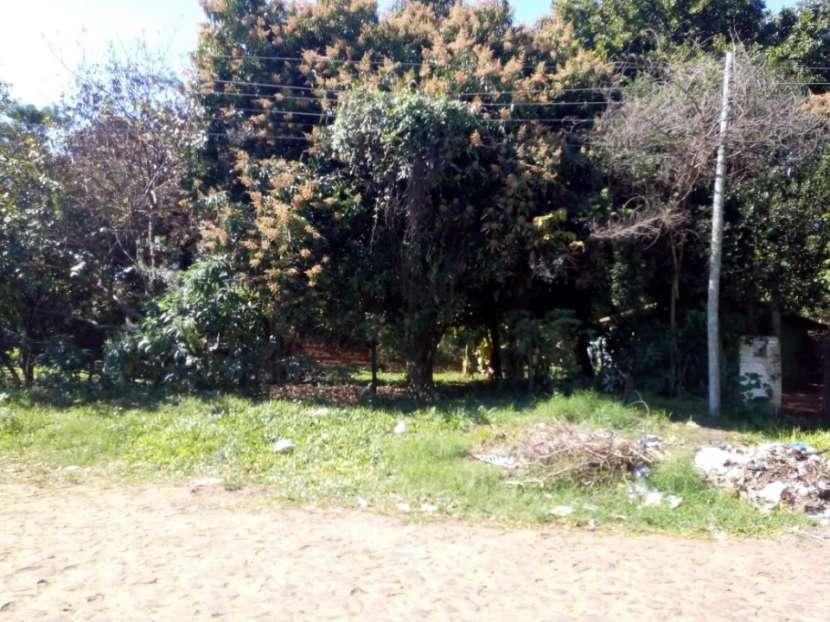 Terreno en Villa Elisa - 1