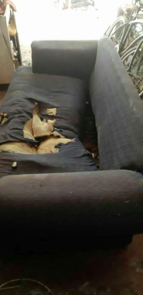 Retapizado de sofá - 0