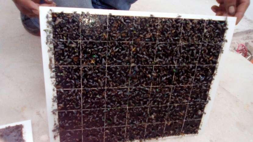 Mata insectos adhesivo inox h30 gleecon - 3