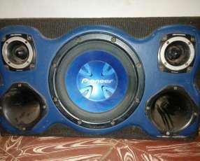 Caja con parlantes y amplificador 1600 W