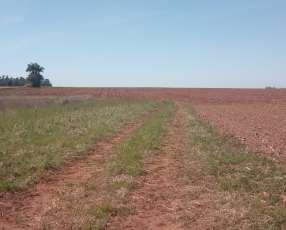 Terreno de 2.000 hectáreas en La Paz Itapúa