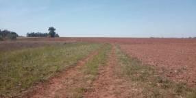 2.380 hectáreas en La Paz Itapúa