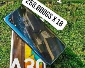 Samsung Galaxy A30 2x1