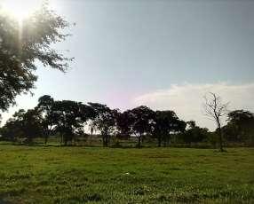 Lote en Areguá