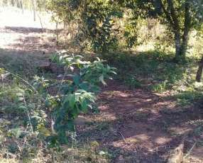 Terreno de 2.5 hectáreas con arroyo en Nueva Alborada