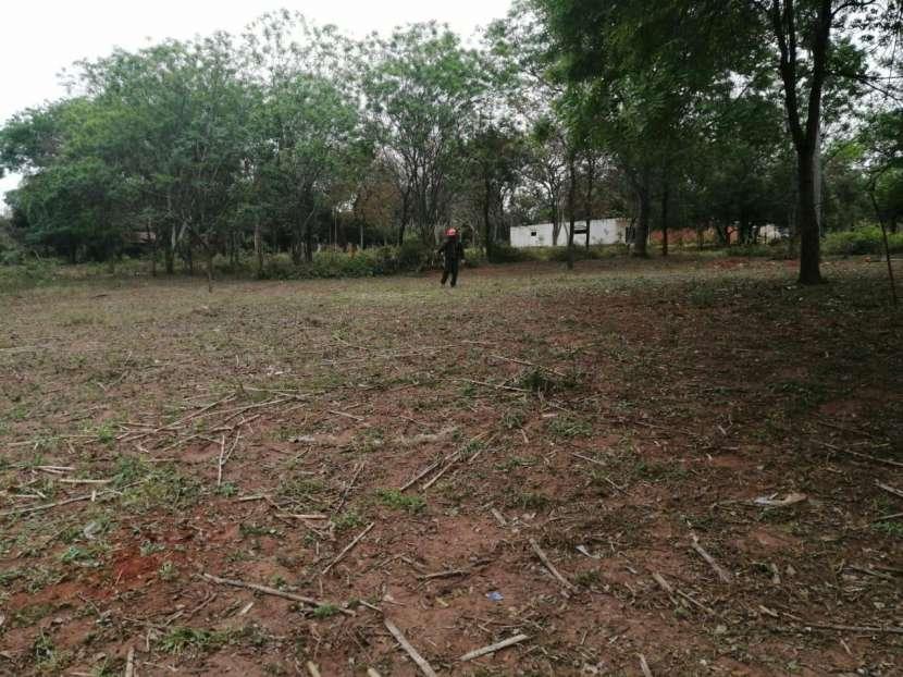 Tres terrenos en Ñemby Cañadita - 0