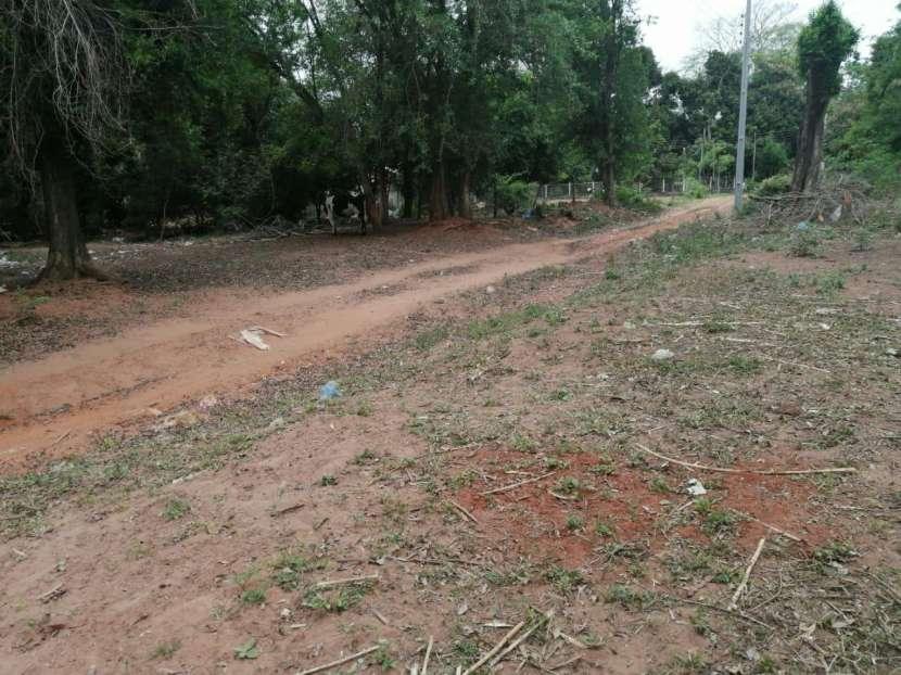 Tres terrenos en Ñemby Cañadita - 1