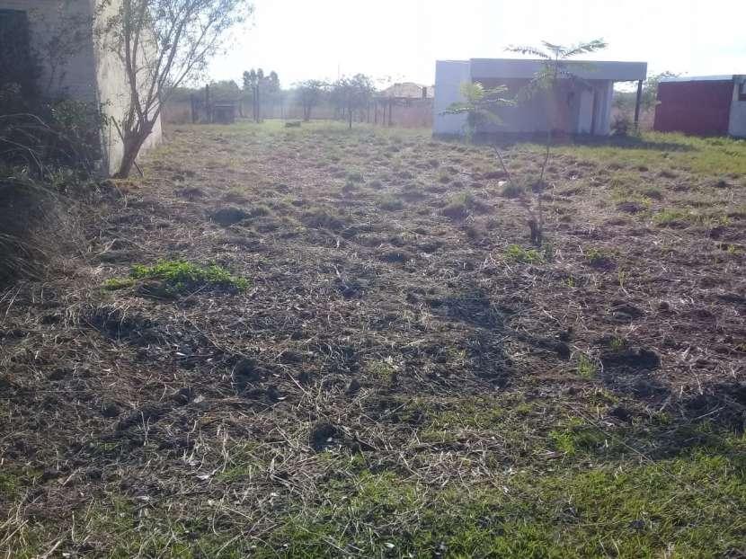 Terreno en Costa Lago Ypacaraí - 3