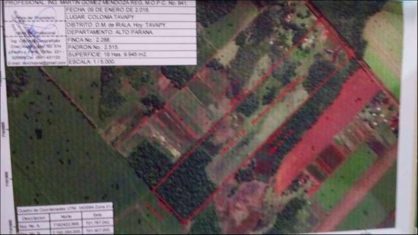 Terrenos Tavapy de 19 hectáreas - 3