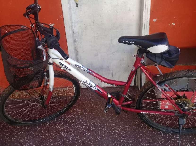 Bicicleta Caloi - 2