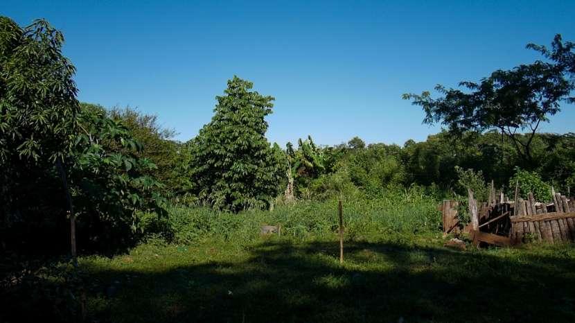 Chacra de 20 hectáreas en Santaní - 4